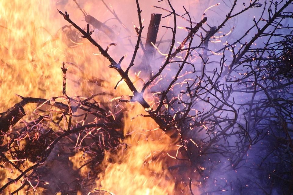 Incêndio da Mealhada obriga a corte da A1